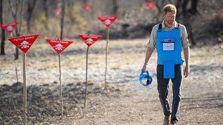 Príncipe Harry assume legado da mãe em Angola