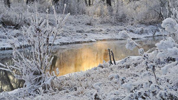 سرمای زودرس با بیش از ۱۲۰ سانتیمتر برف در بخشهایی از آمریکا و کانادا