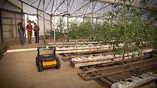 Η υψηλή τεχνολογία επηρεάζει το μέλλον της διατροφής και της στέγασης
