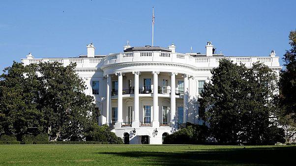 Beyaz Saray'ın basın odasında bir gazetecinin üzerine fare düştü