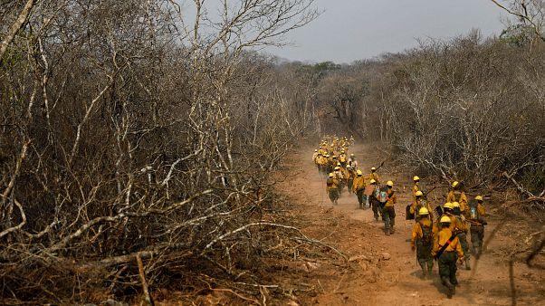 Bolivia empieza a controlar el fuego según las autoridades