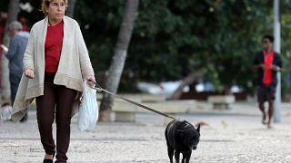Κύπρος: Σύσταση Αστυνομίας των Ζώων