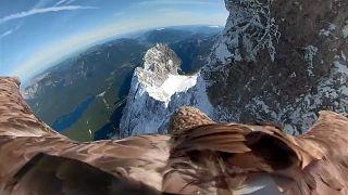 Voo de águia sobre os Alpes