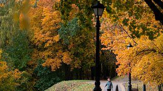Borús, esős idő lesz az első októberi hétvégén