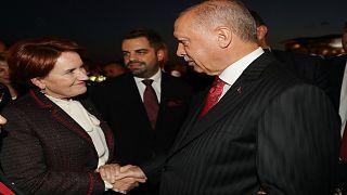 Cumhurbaşkanı Erdoğan, Cumhurbaşkanlığı Külliyesi'nde 30 Ağustos Zafer Bayramı dolayısıyla resepsiyon verdi. Resepsiyona İYİ Parti Genel Başkanı Meral Akşener de katıldı