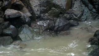 La Thaïlande pleure six éléphants morts dans une cascade