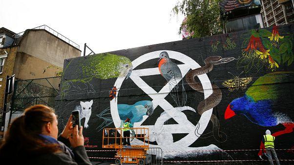 """Grupo """"Extinction Rebellion"""" pinta mural em Londres"""
