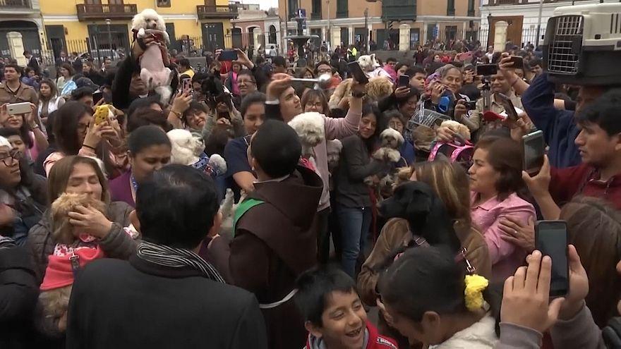 لیما؛ مراسم متبرک کردن حیوانات خانگی توسط یک کشیش