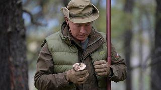 Vladimir Putin celebrates 67th birthday in Siberian mountains