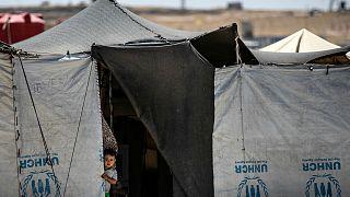 Suriye'de IŞİD'li esirlerle ilgili Türkiye'nin seçenekleri neler?