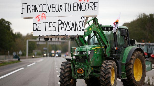 France : agriculteurs en détresse (et en colère)