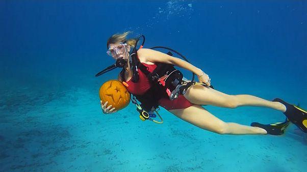 Divers carve pumpkins in depths of Florida Keys