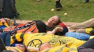 سیدنی؛ بازداشت معترضان جنبش اقلیمی «شورش علیه انقراض»