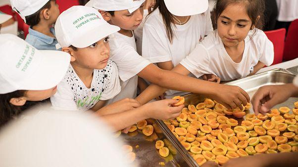 Dünya Gıda Günü: 820 milyonu aşkın kişi açlık çekiyor