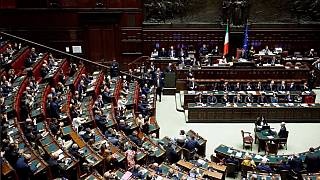 Italy's parliament will be quieter in future.