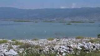 Environmental restoration of Lake Karla revives Greek wildlife and locals