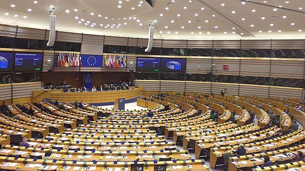 Avrupalı parlamenterler: Türkiye'nin Suriye harekatı Erdoğan, Trump ve AB için bir dönüm noktası