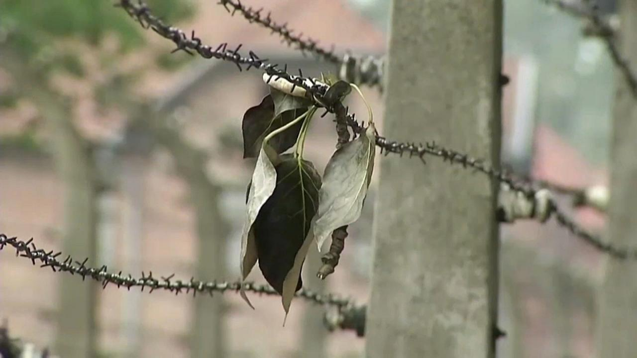 Auschwitz: quasi ultimati i lavori di restauro e conservazione