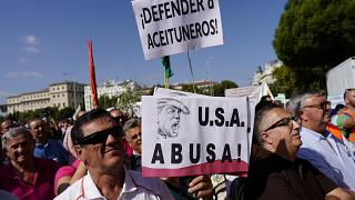 Los olivareros españoles en pie de guerra contra los aranceles
