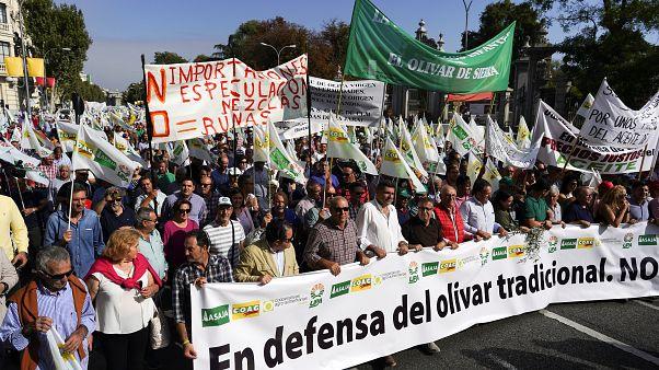 El sector español del aceite clama contra los aranceles de Trump