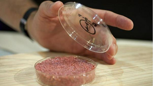 تولید گوشت مصنوعی برای نخستین بار در فضا