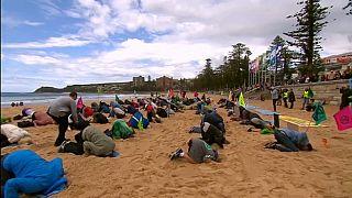 Экоактивисты прячут голову в песок