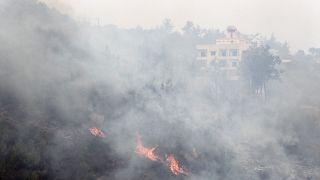 بولا يعقوبيان ليورونيوز عن حرائق لبنان: الدولة في غيبوبة والبلد عاجز