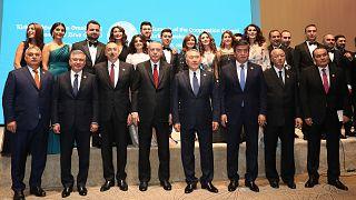 Türk Konseyi'nden Barış Pınarı Harekatı'na destek