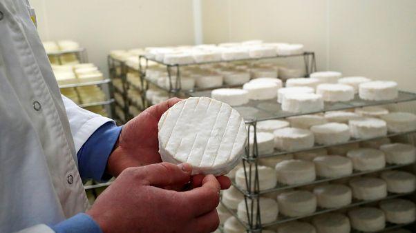 Francia: Pérdidas millonarias en el sector lácteo por accidente industrial