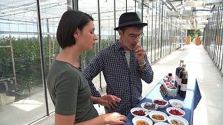 I fiori nel piatto: tra chef e petali, una ricerca italo-francese