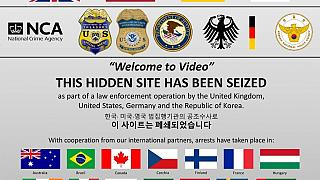 The seized Welome to Video website, courtesy of the U.S. department of Justice.