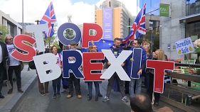 Brüssel: 50 Menschen protestieren gegen den Brexit