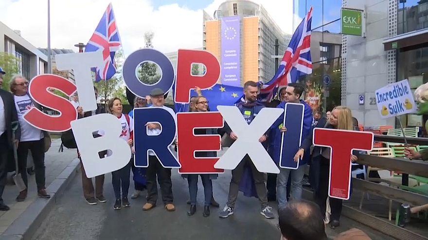 مخالفت با برکسیت در بروکسل با لباس بوریس جانسون و هالک شگفتانگیز