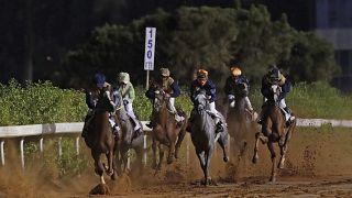 Yaşlanan binlerce yarış atının son durağı mezbahane oluyor: Etler Japonya ve Rusya'ya gönderiliyor
