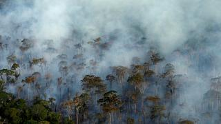 Amazzonia: dopo gli incendi, arrivano i cercatori d'oro