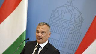 A Fidesz után a MOB-ból is kitették Borkait