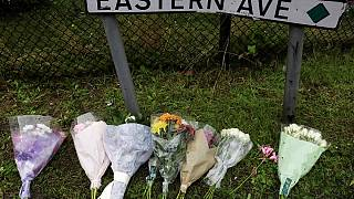 Трагедия в Эссексе: новые задержания