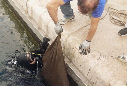 Ευρωπαϊκές πρωτοβουλίες για τον καθαρισμό των ακτών και των λιμανιών