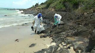 Manchas de petróleo nas praias do Brasil diminuem