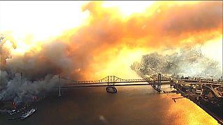 Калифорния: виноградники в огне