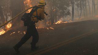 شاهد: حرائق مدمرة في كاليفورنيا والولاية تعلن حالة الطوارئ