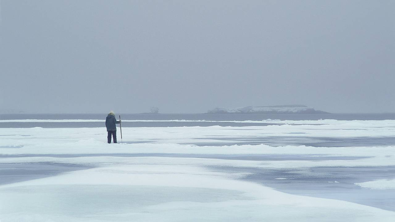 Арктика: прогулка по тонкому льду