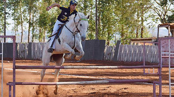 في فنلندا.. استخدام سماد الخيول لتوفير الكهرباء وتدفئة المنازل