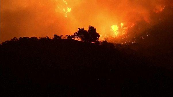 Waldbrände: Über 185.000 Kalifornier fliehen