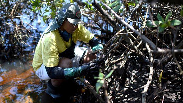 """""""Isto é um desastre"""", diz residente sobre o derrame de petróleo no Brasil"""