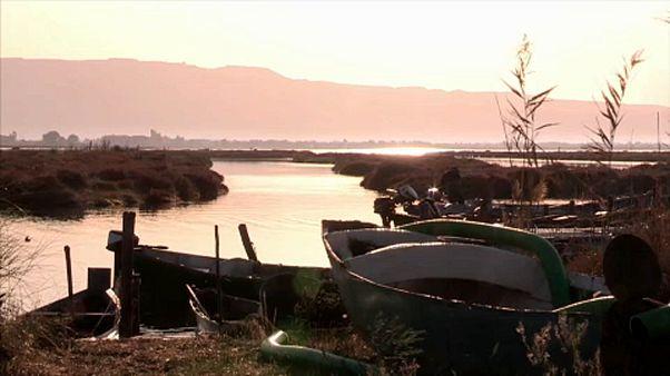 Csodálatos mocsárvidéket fenyeget a tengerszint emelkedése Szardíniánál