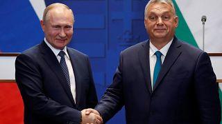 Putin: Macaristan Türk Akımı'yla enerji güvenliğini sağlayabilecek