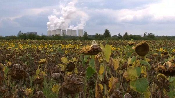 """""""Justice climatique"""" : Berlin échappe à un procès"""