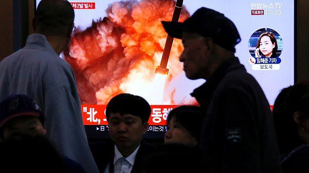 Kuzey Kore: Çoklu roketatar denemeleri başarılı oldu