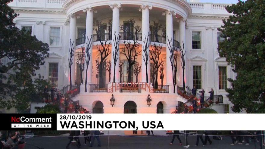 La fiesta de Federer, Halloween en la Casa Blanca y el triunfo de los Nationals de Washington